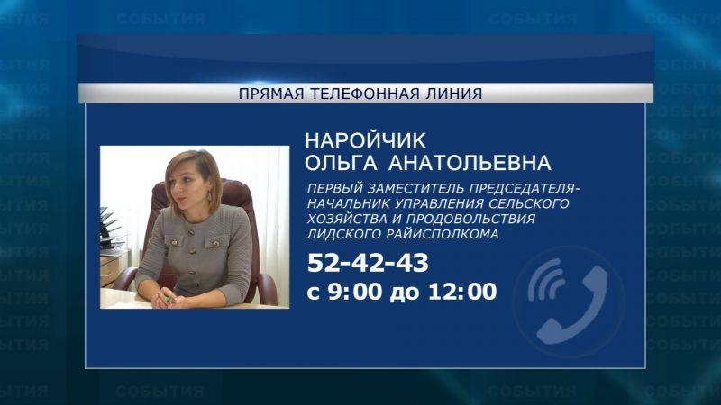 Очередная «прямая телефонная линия» пройдет в субботу, 2 ноября, в Лидском райисполкоме