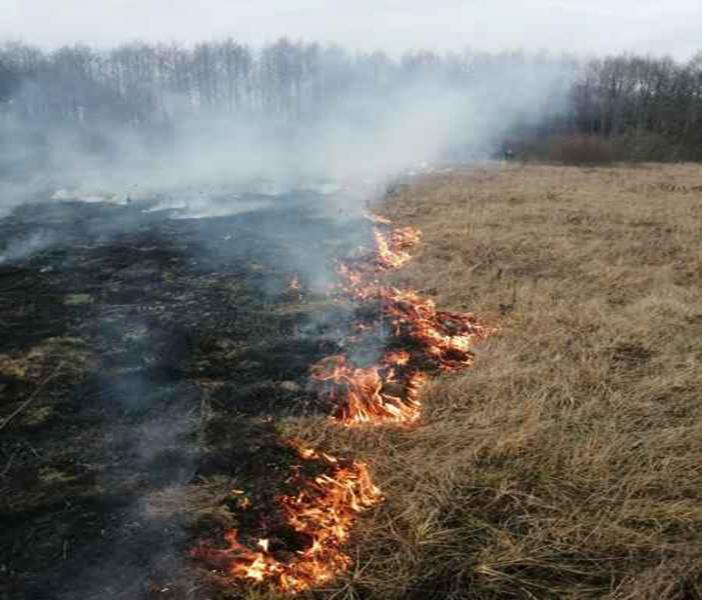 Два случая загорания сухой растительности произошли в Лидском районе