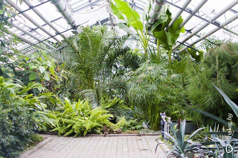 В Лидском районе реализуется проект «Сад Мира»