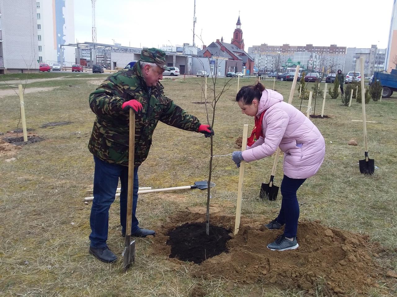 Проект «Сад Мира» реализуется в Лидском районе погранотрядом