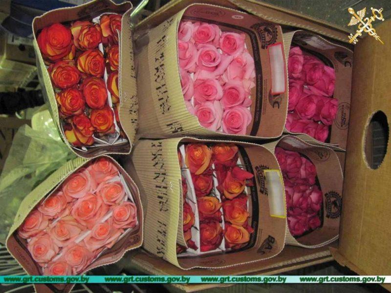 Попытку незаконного ввоза роз пресекли в пункте пропуска «Бенякони»