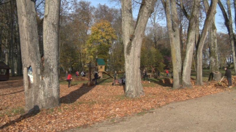 Лидчане присоединились к акции «Чистый лес»