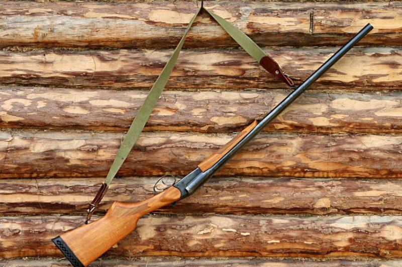 Перечень экспертов по оценке охотничьих трофеев обновили в Беларуси.