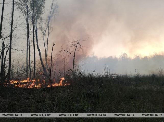 В весенний период увеличивается риск загорания сухой растительности