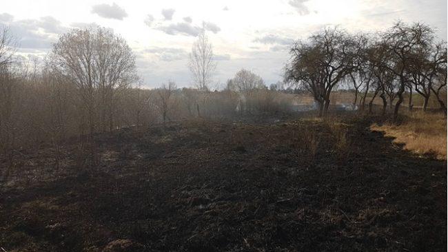 Три случая возгорания сухой растительности произошли в Лидском районе