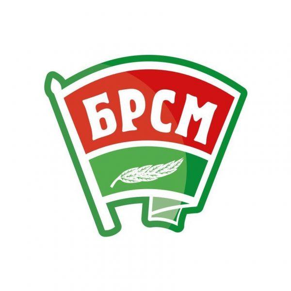 Лидский райком «БРСМ» все чаще проводит мероприятия в интернете