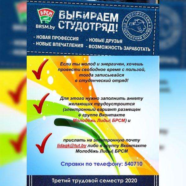 Лидский райком «БРСМ» проводит онлайн-регистрацию желающих трудоустроиться в летний период