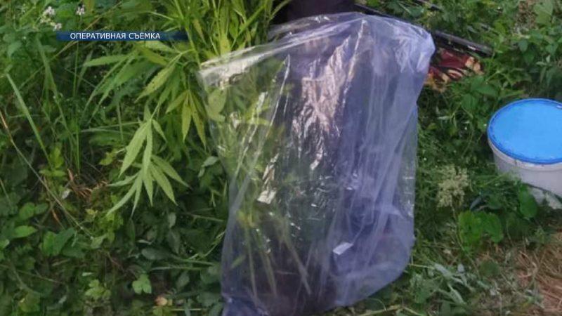 Сотрудники отдела по борьбе с наркотиками совместно с пограничниками задержали 33-летнего жителя Лиды