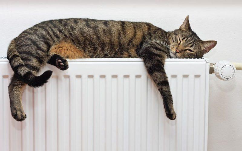В Лидском районе включают отопление