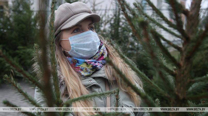 Лесхозы Беларуси продали свыше 83 тысяч новогодних деревьев с момента открытия елочных базаров