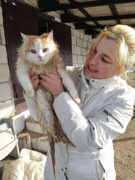 В Лидском районе спасатели помогли кошке выбраться из 15-метрового колодца.
