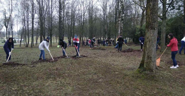 Лидчане 17 апреля вышли на субботник. Они наводили порядок в населенных пунктах и озеленяли их