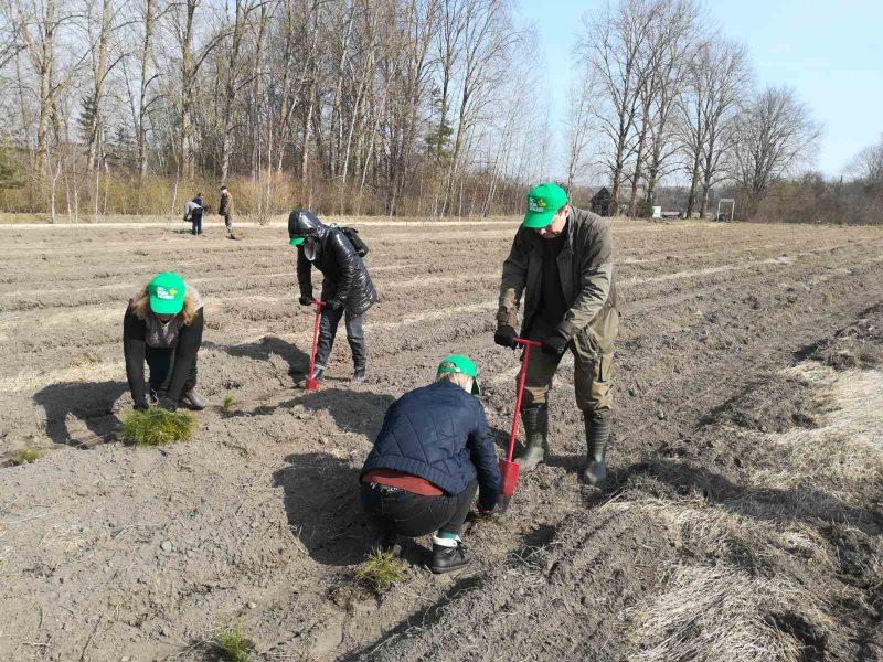 Работники Лидского райисполкома приняли участие в республиканской акции «Неделя леса»
