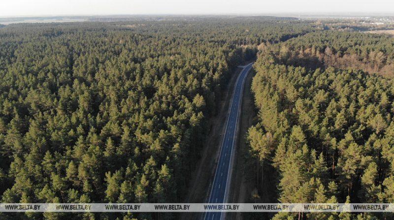 В Лидском районе из-за жары сегодня введен запрет на посещение лесов и торфяников