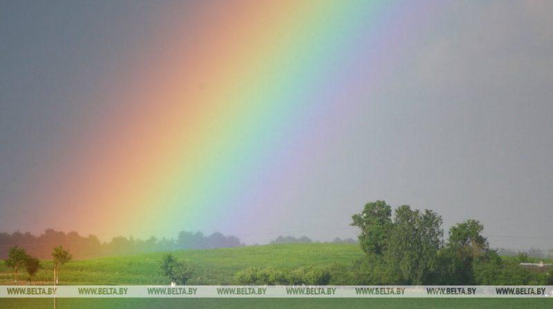 Кратковременные дожди и грозы прогнозируются в предстоящие выходные дни в регионе