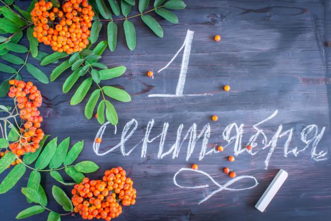 Первого сентября новый учебный год начнется не только в общеобразовательных школах, но и в школах искусств