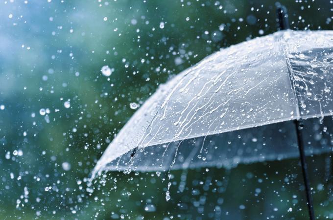 Кратковременные дожди и грозы ожидаются на этой неделе в регионе