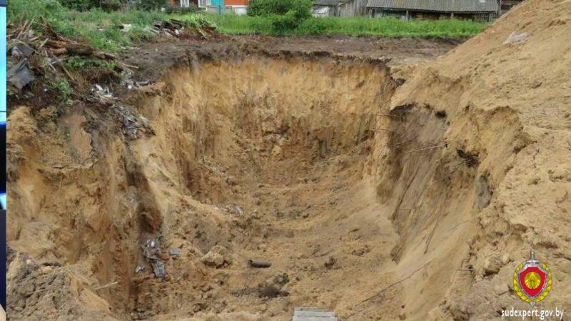 На костных останках, обнаруженных на заброшенном участке в деревне Лесники в Лидском районе, следов криминала нет