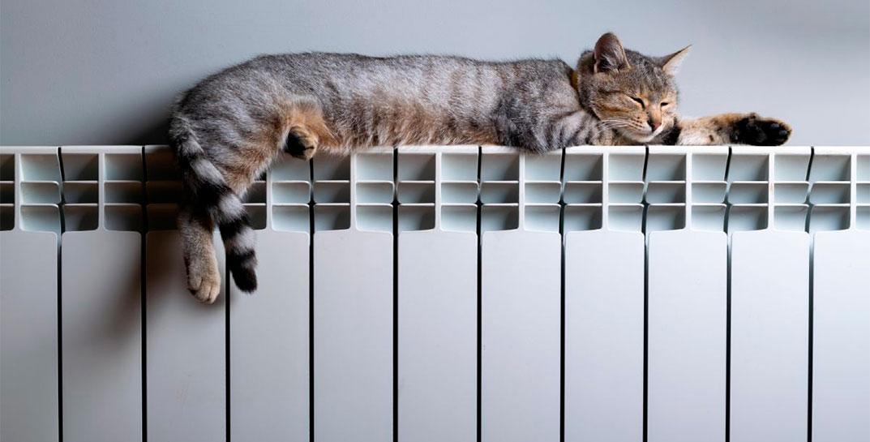 В квартирах Лидчины включают отопление