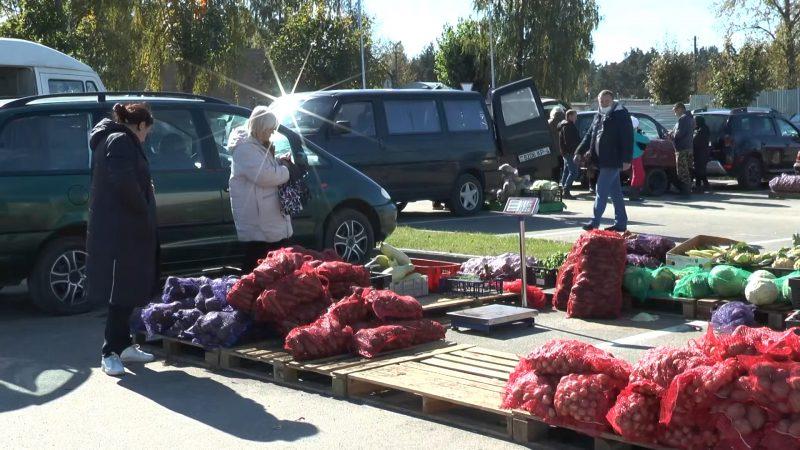 В Лиде стартовал сезон сельскохозяйственных ярмарок.