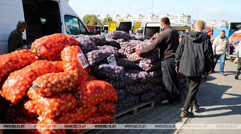 Сезон сельскохозяйственных ярмарок продолжается в Лиде